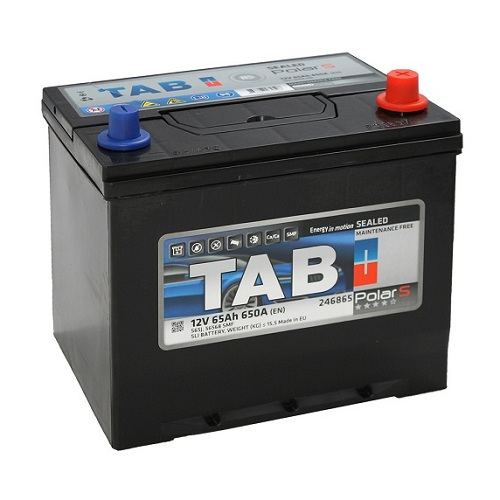 Аккумулятор TAB Polar S Asia 6СТ-65.1