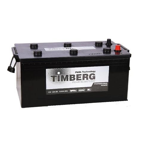 Аккумулятор Timberg Professional Power  6СТ- 225 N L (евро)